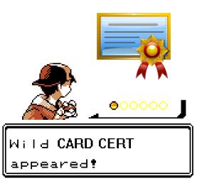 Wild-Wild-cert